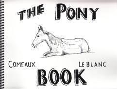 2015 cover pony